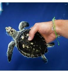 Bracelet 4Ocean upcycling du plastique des océans