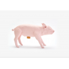 Tire-lire COCHONNET ou PIGGY BANK