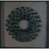 Boites Insectes Scarabées Bleu -Vert foncé n°1